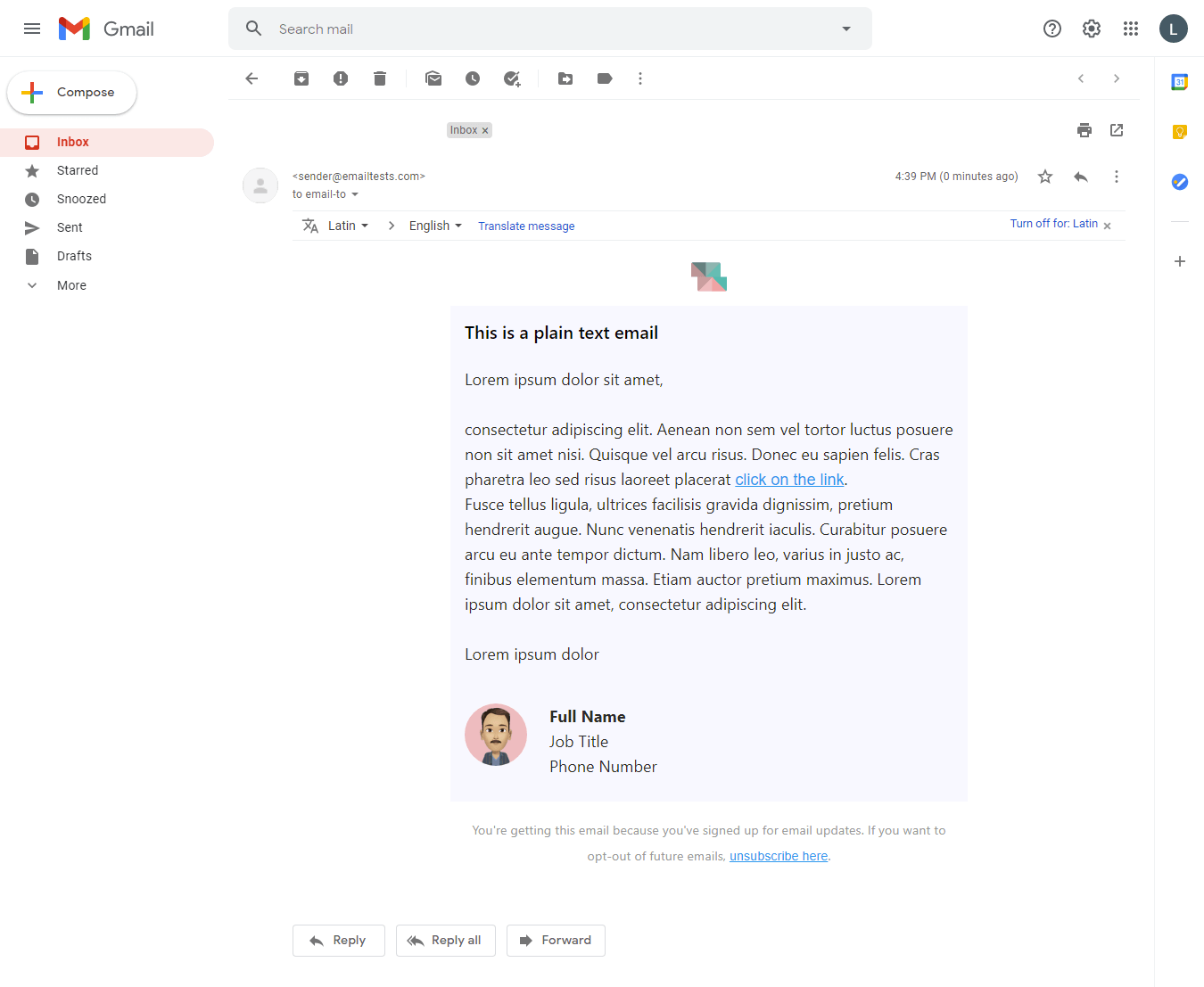 Screenshot of Simplicity plain text email display on Gmail